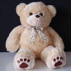 Teddy Bear B